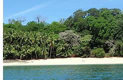 Panama Beach Island Touren & Trips in Chiriqui's Gulf